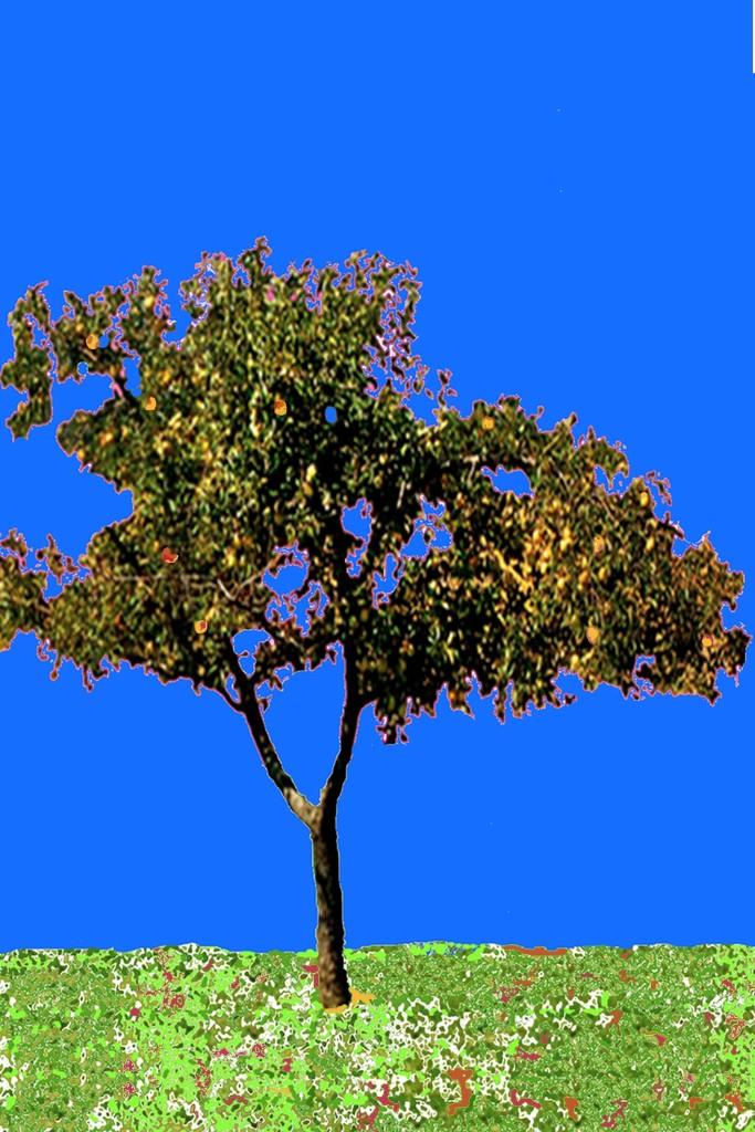 ChaBuAppeltree